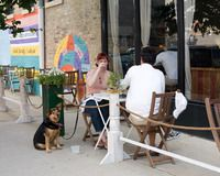 Your dog is just as happy as you are that it's warm outside. The next time you're dining alfresco, bring your pup to one of these dog-friend...