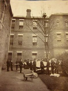 Colney Hatch Asylum. A photo of a patient up a tree, with a bunch of asylum attendants standing around... they have attached bedsheets to the tree with ropes in case the patient jumps.
