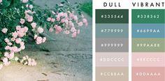 fieldguided: how to: colour palette friendship bracelets