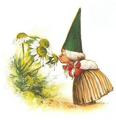 """""""Gnome"""" by Rien Poortvliet. Woodland Creatures, Magical Creatures, David Le Gnome, Fairy Land, Fairy Tales, Troll, Gnomes Book, Dutch Artists, Faeries"""