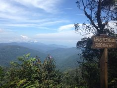 Jungle treck n1 Cameron highlands