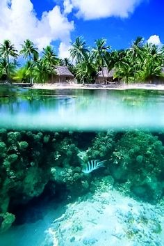 Tahiti Beach - What a cool photo! Hard to tell what's more relaxing - the warm ocean waters or the warm ocean breezes - aaahh! Places Around The World, Oh The Places You'll Go, Places To Travel, Places To Visit, Around The Worlds, Vacation Destinations, Dream Vacations, Vacation Spots, Romantic Vacations