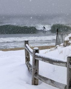 Snow Surfer (aka Crazy Person)  Point Pleasant, NJ  Photographer Ron Schiller