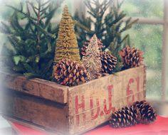 December moments | Flickr - Photo Sharing!