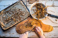 Pampelišková detoxikační káva Russian Recipes, Herb Garden, Pesto, Smoothies, Herbs, Polish, Cookies, Coffee, Fit
