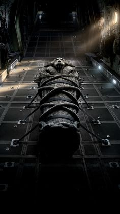 An ancient Egyptian princess is awakened from her crypt beneath the desert, bringing with her malevolence grown over millennia, and terrors that defy human comprehension. The Mummy 2017 Movie, Mummy Movie, Tom Cruise, Action Movie Poster, Movie Posters, Hd Movies, Movie Tv, Horror Movies, Star Trek Into Darkness