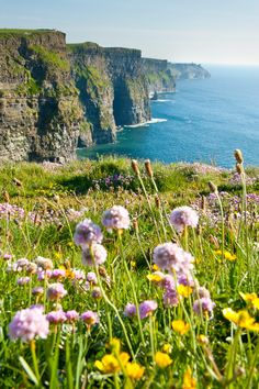 Tours Specifically for Multi-Generational Families!  The Emerald Isle (Dublin, Cashel, Killarney & Newmarket-on-Fergus, Ireland)  tami@goseemickey.com