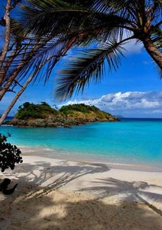 Trunk Bay St. John.