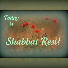 Today is Shabbat Rest!