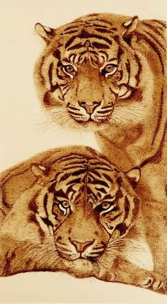 By Lies Broekman Pyrography, woodburning. Wood Burning Stencils, Wood Burning Crafts, Wood Burning Patterns, Wood Burning Art, Wood Patterns, Coffee Painting, Painting On Wood, Coffee Artwork, Animal Paintings