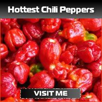 Can you guess the 10 hottest chili peppers in the World ...