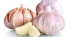 Bawang putih menyimpan banyak manfaat untuk kesehatan. Apa manfaatnya buat telinga?