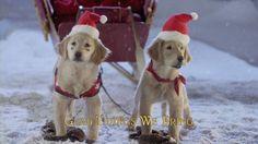 Santa Buddies Sing Along - We Wish You a Merry Christmas