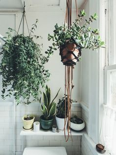 Adding some greenery to this room gives it an instant bohemian vibe. When choosing plants, consider the amount of light your bathroom gets.