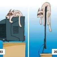 Images Quel dommage ! Images drôles Dessin humoristique sur Humour.com