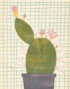 basiadziadosz:  cacti