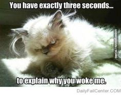 Whenever someone wakes me up