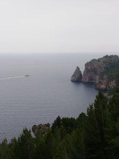 Küstenlinie Mallorca Orange, Places, Water, Outdoor, Jam Jam, Deli Food, Olives, Majorca, Water Water