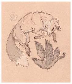 Animal Sketches, Animal Drawings, Cool Drawings, Drawing Sketches, Fox Tattoo Design, Character Art, Character Design, 3d Cnc, Fox Art