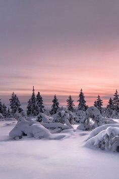 Winter ❄️❄️❄️