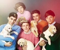 Zayn Malik, Harry Styles, Niall Horan, Louis Tomlinson and Liam Payne pose with puppies in Wonderland...aka the cutest thing to grace the Internet