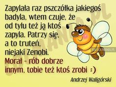 Wtf Funny, Motto, Haha, Jokes, Humor, Fictional Characters, Poland, Smile, Pink