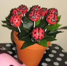 Cute cake pops in a terra cotta pot at a Ladybug Party #ladybug #partycakepops