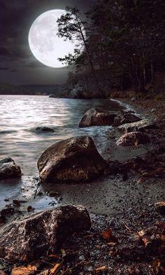Ночью на озере