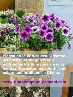 www.Hooponopono-Espanol.com #hooponopono #hoponopono #oponopono