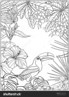 Tropical wild birds and plants.,Tropical wild birds and plants. Coloring book for adult and older children. Tree Coloring Page, Colouring Pages, Adult Coloring Pages, Coloring Books, Free Coloring, Coloring Sheets, Tropical Birds, Tropical Garden, Tropical Plants