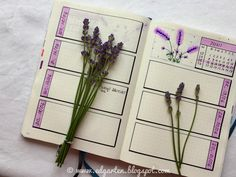 Edgarten - Gartenblog: 📘  Bullet Journal - Juni mit Lavendel - Tag 78 Juni, Homeschooling, Small Notebook, Day Planner Organization, Bullet Journal Ideas, Lavender, Homeschool