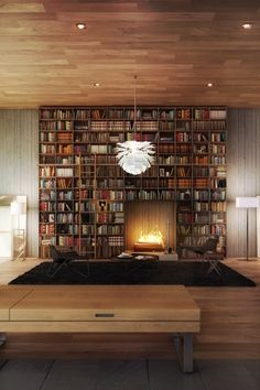 nonconcept:  Home library above fireplace.