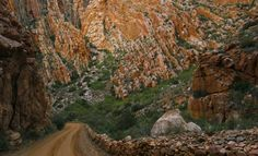 Swartberg Pass. South Africa Mountain Pass, Eternal Sunshine, Pathways, Homeland, Places Ive Been, South Africa, Grand Canyon, Road Trip, Scenery