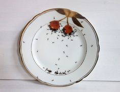 Yet another picnic ruined by an marauding army of ants. Oh wait no, it's just the new dinnerware collection from Evelyn Bracklow. German-based Bracklow, who works out of La Philie, has created many of the pieces in partnership with Etsy and the Rijks Museam in Amsterdam. Even when you realise the all those ants aren't […]