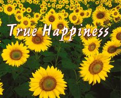 Flowers are signs of true happiness! Alleluia! Amen! <3 O:) *