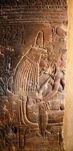 カイロ郊外サッカラにある古代エジプトのツタンカーメン王(紀元前14世紀)の乳母マヤの墓が発見から19年を経て近く一般公開される。ダマティ考古相が20日、記者会見で発表した。マヤが幼いツタンカーメンを…