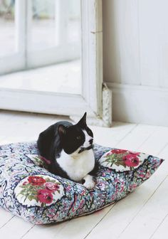 Cat on a beautiful pillow...
