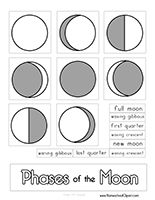 moon phases worksheet printable study the moon cycle with our phases of the moon worksheet for. Black Bedroom Furniture Sets. Home Design Ideas
