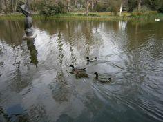 Parque D. Carlos I, Caldas da Rainha