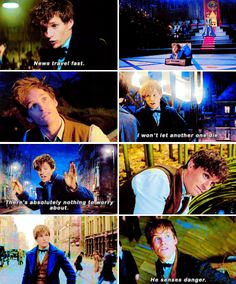 Fantastic Beasts and Where to Find Them - We're going to recapture my creatures before they get hurt.