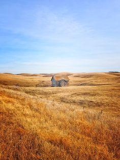 Verlassenes Farmhaus in Alberta, Kanada - umgeben von nichts als goldenem Weizen.