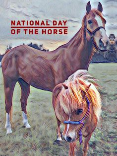 December — Honoring the contribution horses have had on the economy, character, and history of the United States. December, United States, Author, Horses, History, Pets, Day, Pictures, Character