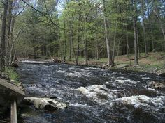 summer camping - Delaware Water Gap - PA & NJ