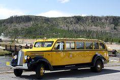 White Yellowstone bus
