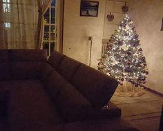 My Christmas tree. ....