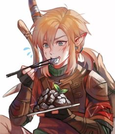 Link - The legend of Zelda : Breath of the Wild The Legend Of Zelda, Legend Of Zelda Memes, Legend Of Zelda Breath, Ben Drowned, Twilight Princess, Wind Waker, Game Character, Character Design, Film Manga