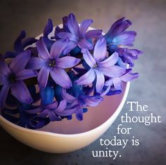 DAY 40 Mar. 10: The thought for today is UNITY. Differences give variety to life and are often only on the surface. Most communities are made of diverse groups of people who have different opinions...