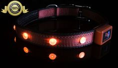 EpicPet Premium LED Dog Collar with Red Flashing LEDs, Dual Reflective Collar Strips, For Medium Sized Dogs, Premium Quality, Flashing Dog Collar is Water Resistant