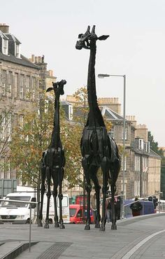 Two Giraffes outside the Omni Centre, Greenside Place, Top of Leith Walk, Edinburgh