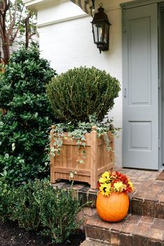 Pumpkin Flower Arrangement for Fall   The Style Scribe